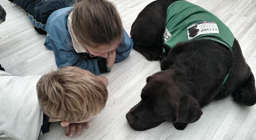 apoyo y refuerzo educativo asistido por perros